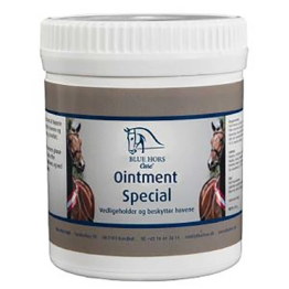 Blue Hors Ointment Special 500 g