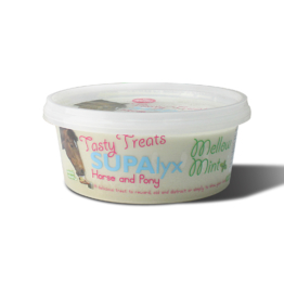 Nettex Tasty Treats Mint, 650g