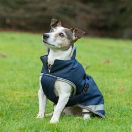Bucas Freedom Hunde Decke, 300g 30-45