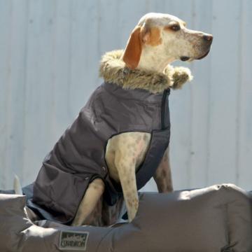 Eskadron Hundedecke NYLON