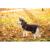 Horseware Rambo Ionic Hundedecke, L