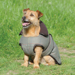 Weatherbeeta Tweed Hundemantel