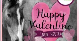 Clasic Pony Express Happy Valentine